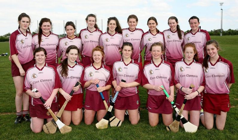 junior-camogie-panel-2017-team-photo